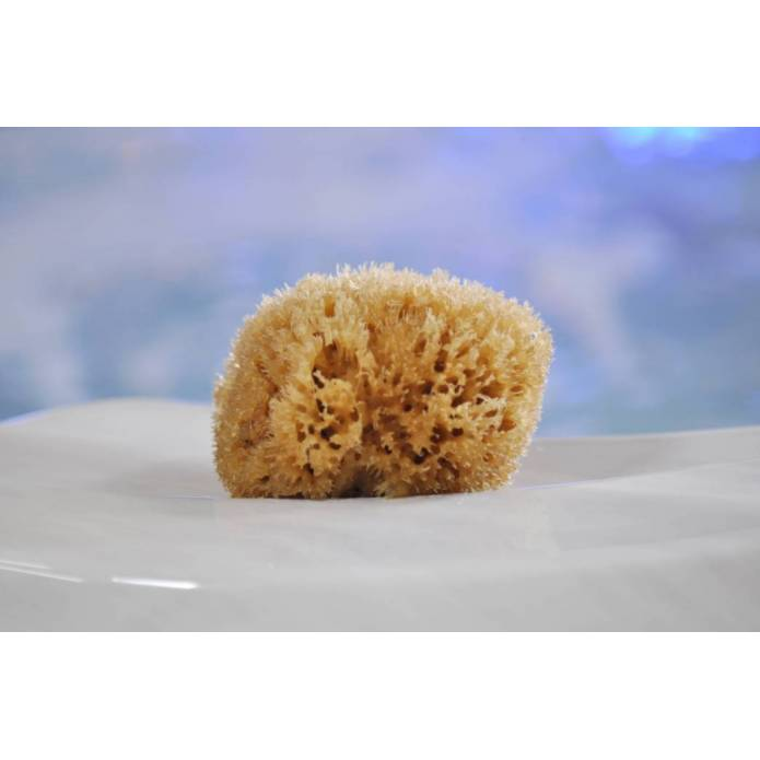 "Eponge Honeycomb 3"" - Natural"